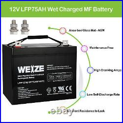 12V 75AH Battery Scooter Wheelchair Mobility Deep Cycle Replaces UB12750