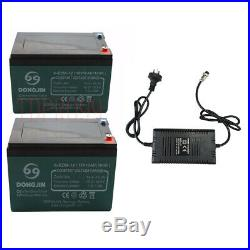 Pair 12V 12Ah 6-DZM-12 Lead acid Battery Charger Wheelchair Mobility Scooter ATV